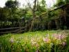 taiwan_sce2012_05