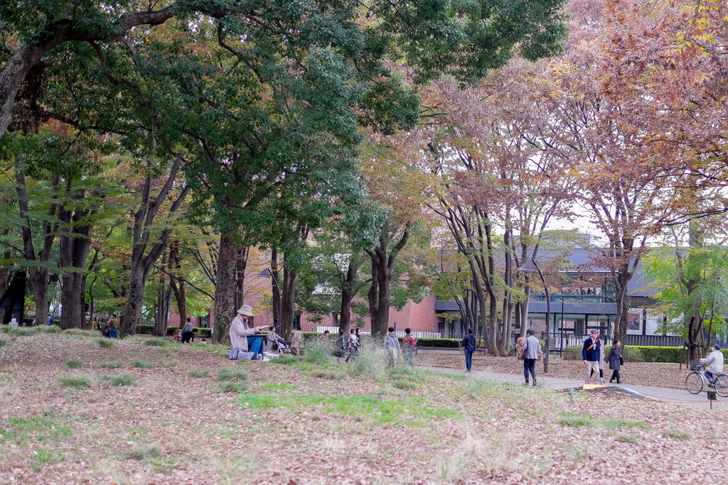 Jap_Nov18_19