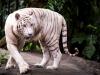 zoo_may2012_05
