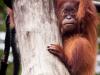 zoo_may2012_08